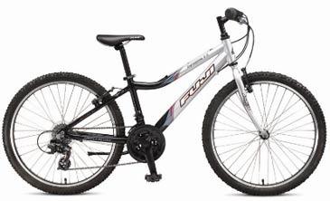Fuji Dynamite Kid's bike