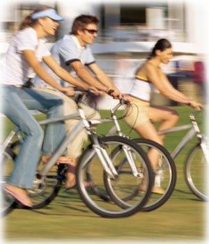 We rent comfort bikes.